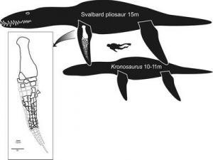 biggest pliosaur