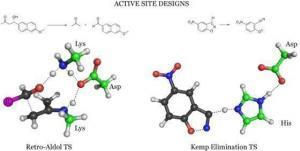 designer enzymes
