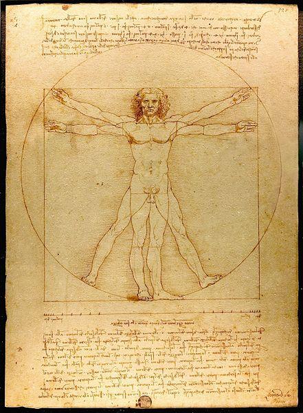 vitruvian man - by leonardo da vinci