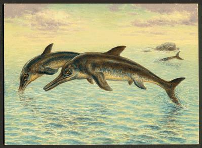 Prehistoric Reptiles And Fish