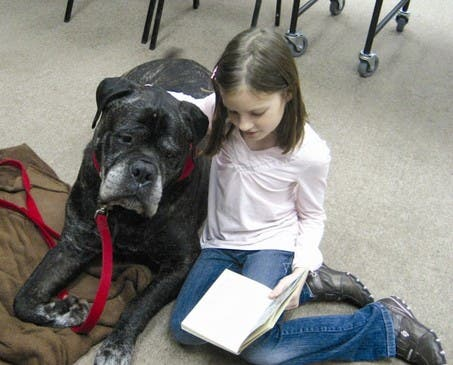 large_read-to-dog-3-11