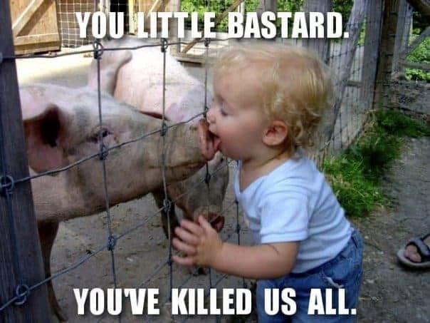 swine-flu-orlando