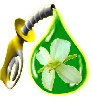 biofuel_logo11