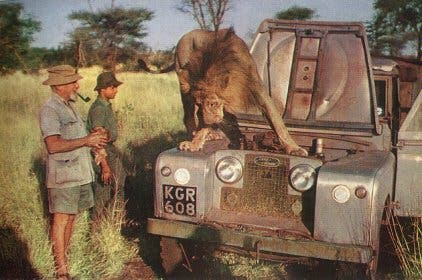 Lions loved him so much they often repaired his car