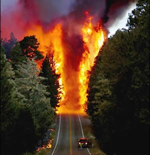 Australia Natural Disasters November