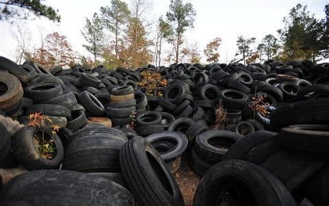 Just one of the slew of dumped tires, as seen in a wooded area near Elloree, S.C. on Nov. 17, 2011. Officials say a $400 littering fine is hardly enough to deal with the problem. (AP Photo/Rainier Ehrhardt)