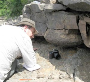 Chris Berry, a paleontologist at Cardiff University, examines the fossilized stump of a Gilboa tree in a quarry at the Gilboa Dam. (c) Cardiff University.