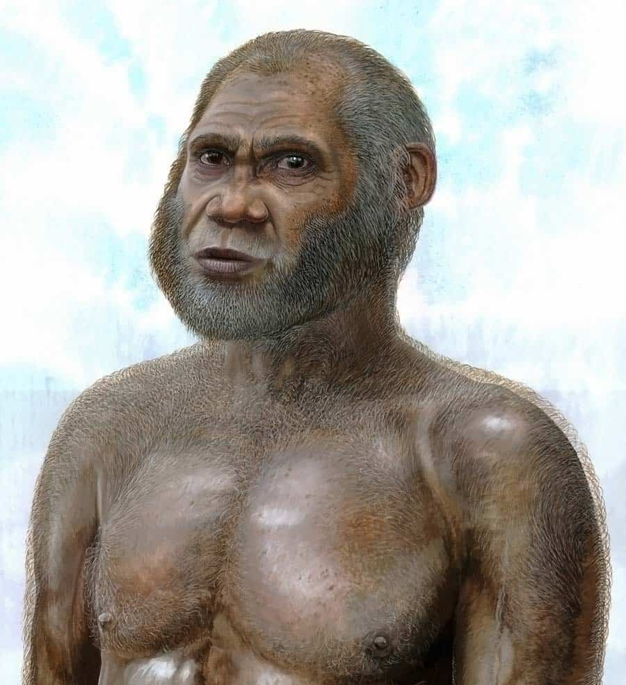 Artist impression of what the Red Cave People might have looked like between 11,500 and 14,500 years ago. (c) Peter Schouten