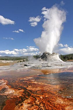 Yellowstone Geyser
