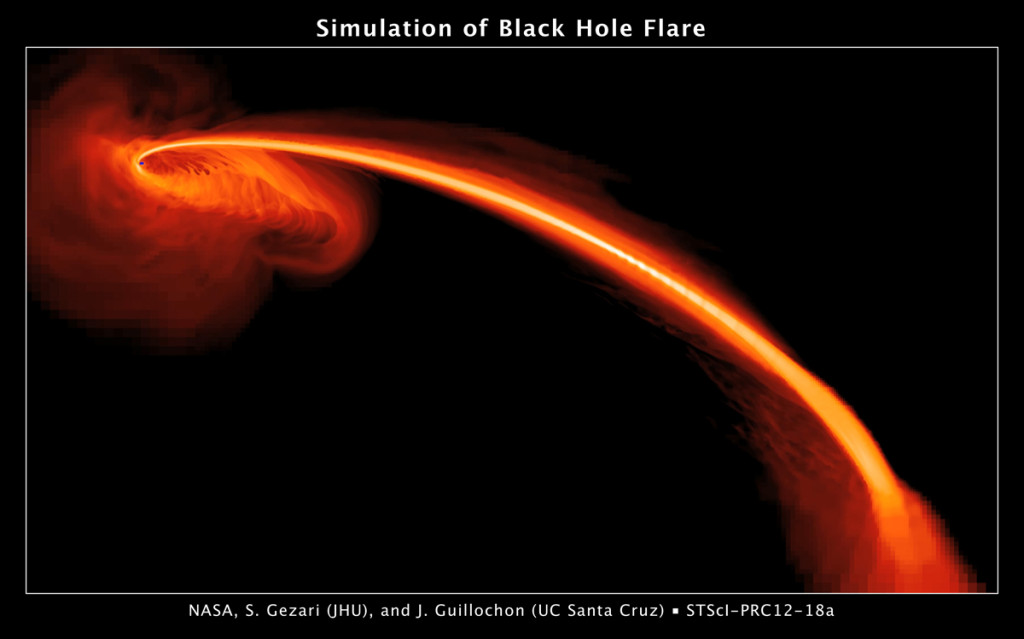 Black Hole Simulantio