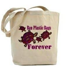 ban on plastic bag essay Exploratory essay on plastic bag ban - dallas essay example since the last decade there has been a push on society, in the united states and elsewhere, to recycle, reduce and reuse - exploratory essay on plastic bag ban introduction.