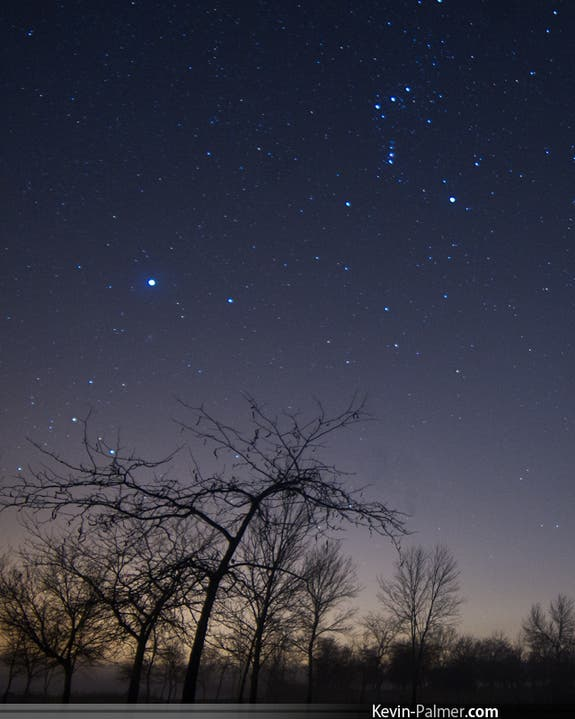 Stargazer Kevin Palmer of Brighton, Wisc., captured this image of a faint Orionid meteor (center left, above the tree)