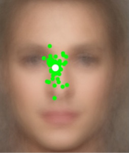 Points within the face (green circles) where, on average, each of 50 participants first looked at when trying to identify faces of famous people. White circle corresponds to the average across all participants. Background is an averaged face across 120 celebrity faces. (c) UCSB