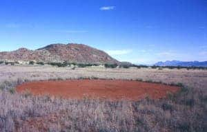 In the oral myths of the Himba people these barren patches are said to have been caused by the gods, spirits or natural divinities. [Via io9.com]