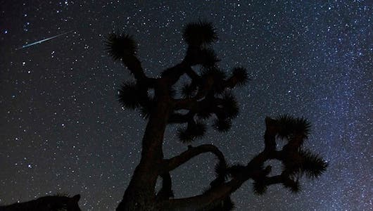 A fantastic photo of a shooting star from the Geminids over Joshua Tree National Park. (c) (Photo: Henry Lee/Flickr)