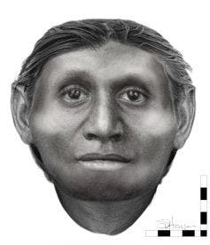 "A reconnstruction of the ""The Hobbit's"" face, according to a forensic facial approximation. University of Wollongong"