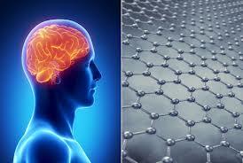 human brain graphene