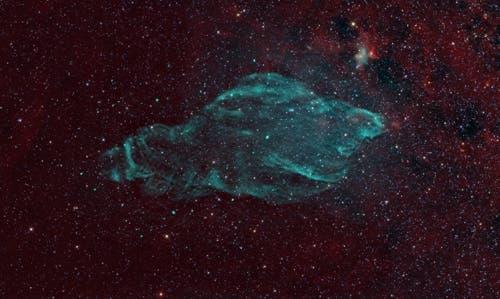 manatee-nebula