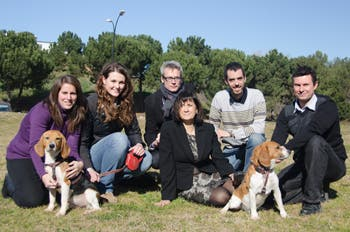 Universitat Autònoma de Barcelona researchers have successfully cured type 1 diabetes in dogs, a breakthrough that gives hope that the same effects might be achieved for humans as well.