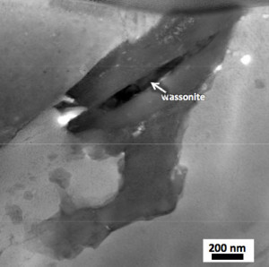 This scanning transmission electron microscope image shows the Wassonite grain in dark contrast. (c) NASA