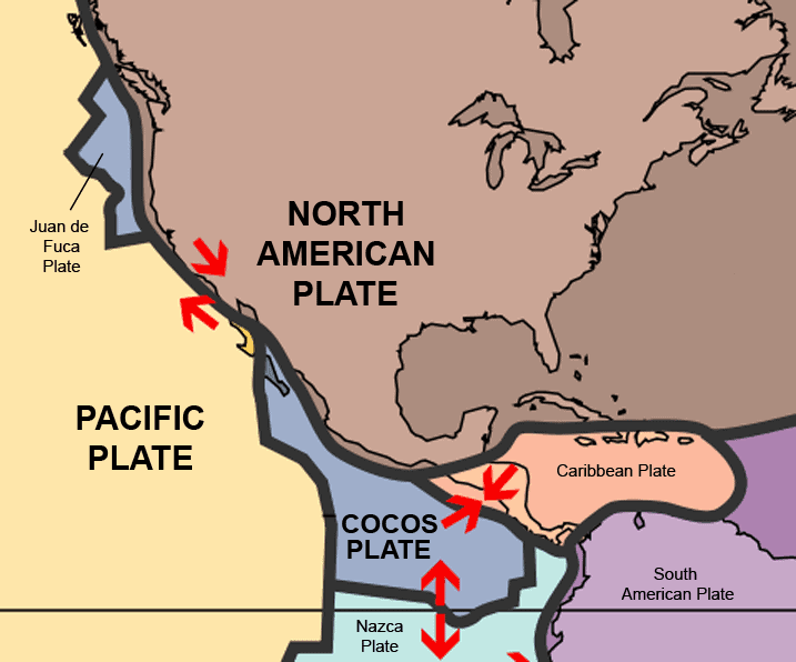 cocos plate