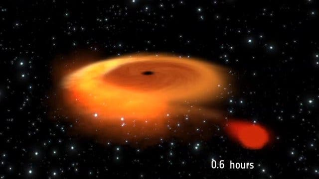 red dwarf black hole