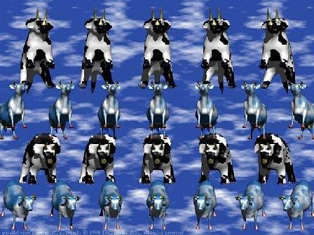 animal stereogram