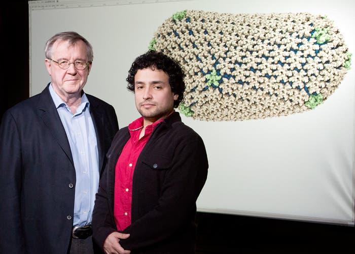 Klaus Schulten, professor of physics; and Juan Perilla, postdoc with Theoretical and Computational Biophysics Group at the Beckman Institute with projection of atomic-level detail of the structure of the HIV capsid (outer shell).