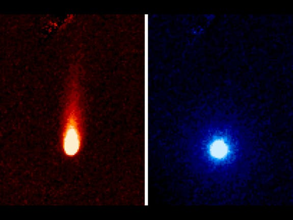 On the left, ISON comet sows a tail of fine rocky dust. On the right, a neutral gas atmosphere surrounding ISON can be seen, likely created by carbon dioxide fizzing off the come. (c) NASA