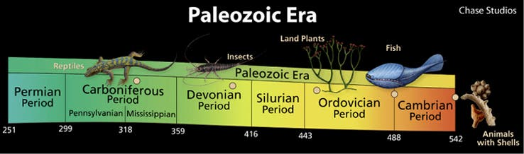 Paleozoic Era