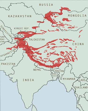 Snow leopard approximate habitats.
