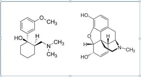 Credit: The structure of Tramadol, compared to morphine.
