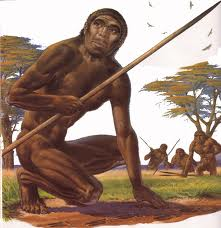 Illustration of Homo Erectus.