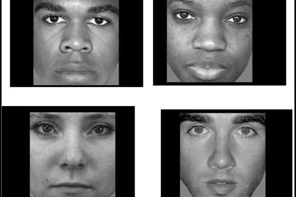 Harvard researchers have found a brain region in which patterns of neural activity change when people look at black and white faces, and at male and female faces. (c) Harvard University