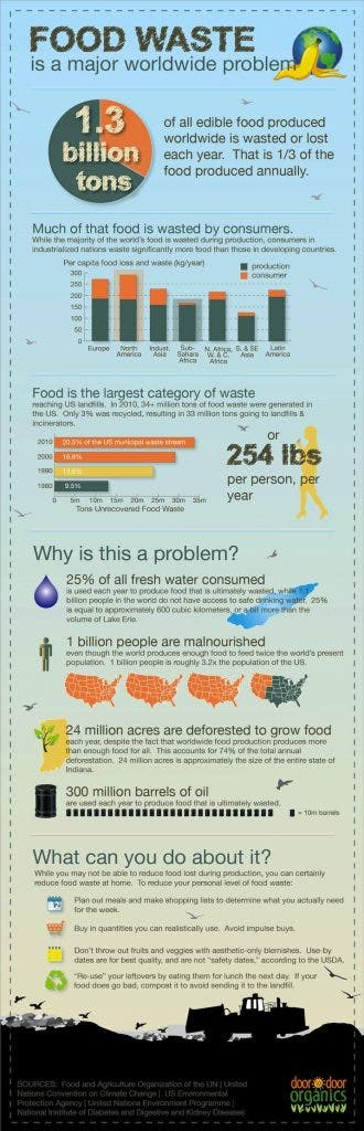food_Wasted_infographic