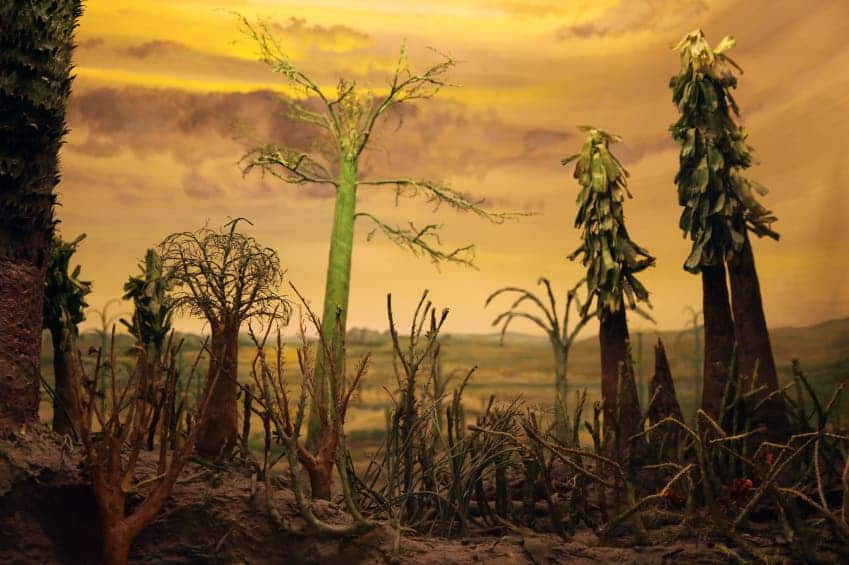 Artistic representation of the Permian plants, affected by acidic rain. Via MIT.