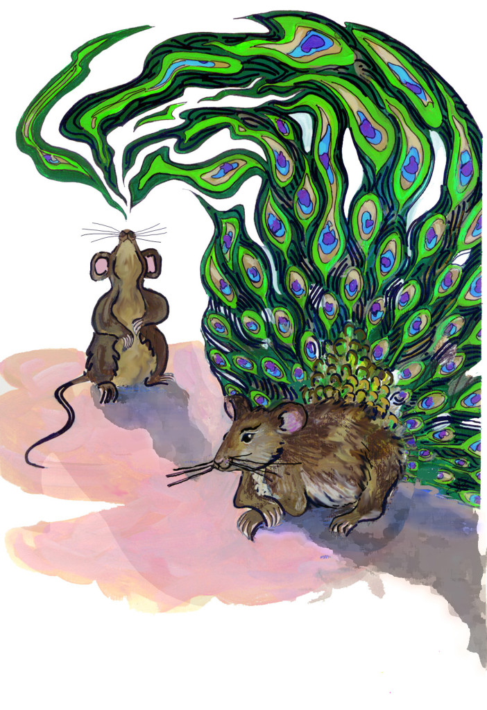 This illustration depicts how the researchers liken the way mouse pheromones act much like a male peacock's tail to attract mates. Illustration by Sarah Bush, University of Utah