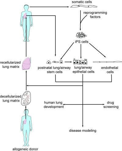 (C) Nature Biotechnology