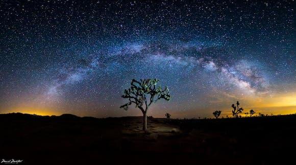 Milky Way over Joshua Tree National Park - Photo taken by Manish Mamtani via EarthSky.