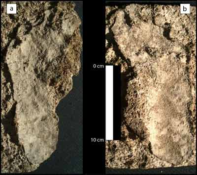 oldest human footprints