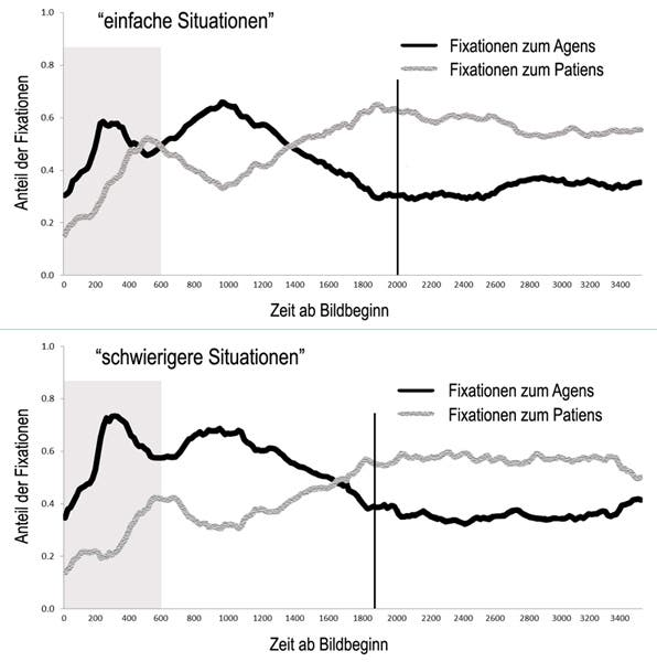 Proportion of fixations (gazes) on the agent (person acting) and patients (object of the action) when describing simple situations (a) and more complex situations (b). In the case of simple situations, the spoken utterance begins slightly later than in complex ones (vertical line in the graphs) because the speaker plans further in advance in the first case. © MPI for Psycholinguistics