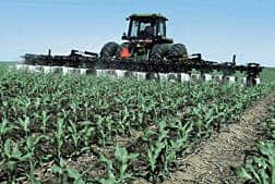Increased carbon dioxide levels may accelerate the growth of some crops. Source: USDA (2009)