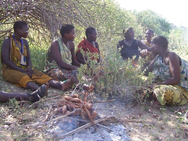 Hadza women roasting tubers. © Alyssa Crittenden