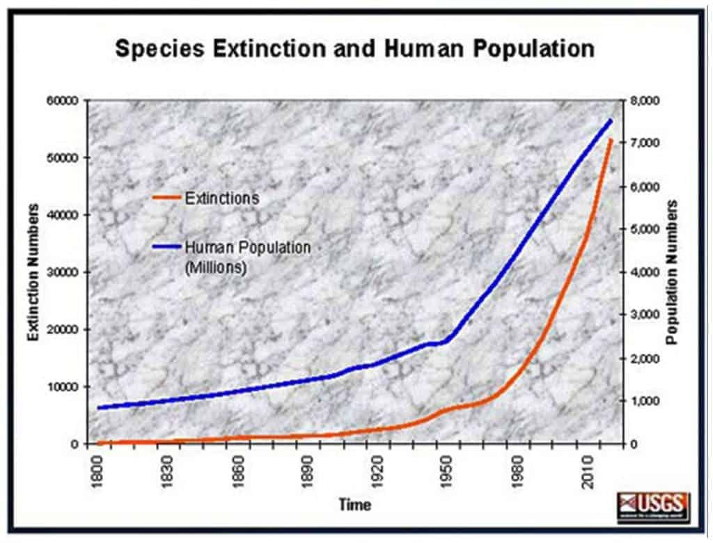 The rate of extinctions on Earth has grown tremendously following the industrial revolution.
