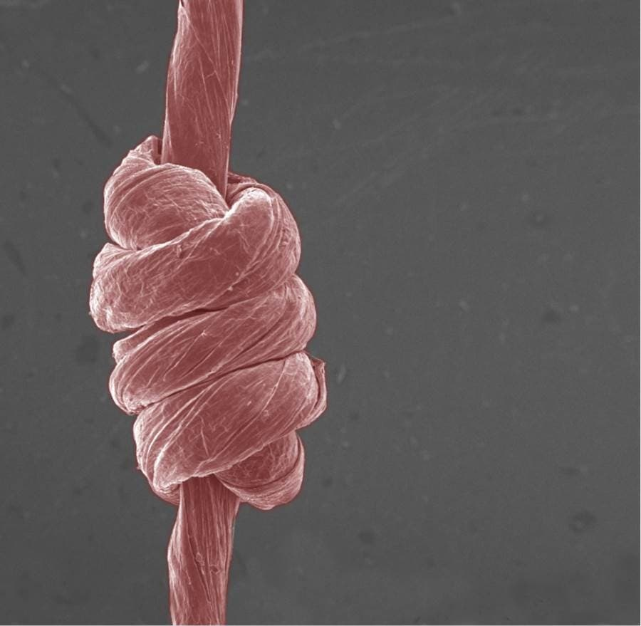 Strong, stretchable fibers made of graphene oxide can be knotted like yarn (credit: Terrones group/Penn State)