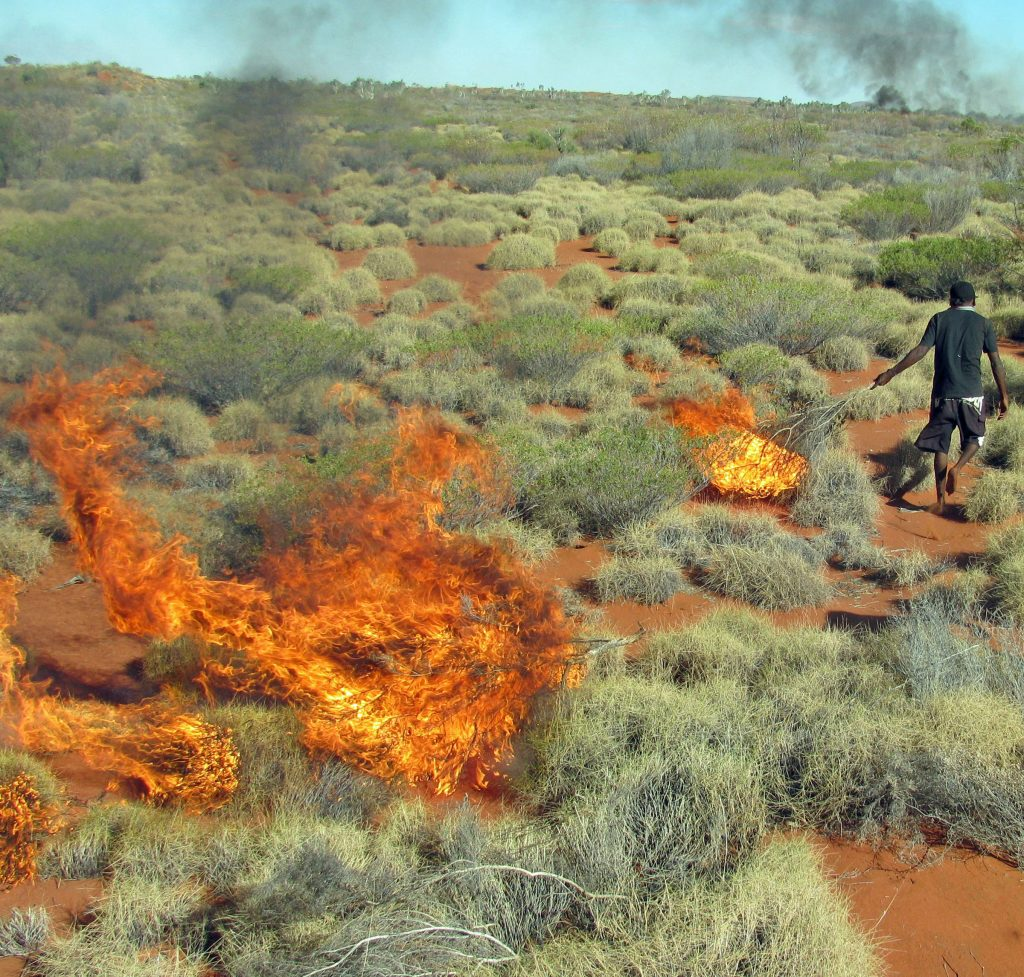 A member of the Martu Aboriginal community in western Australia sets fire to mature spinifex grass as a way to expose burrows occupied by sand monitor lizards, which are then hunted as a major food source.
