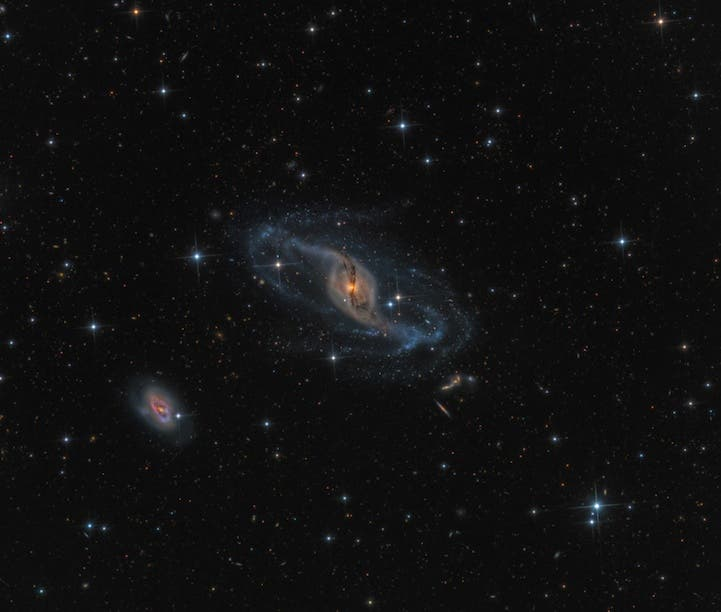 NGC 3718 by Mark Hanson (USA)