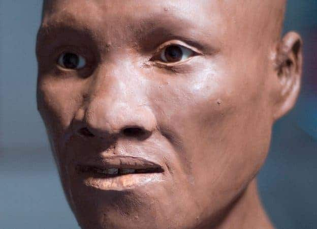 This reconstruction of another ancient modern human found in Romania 43,000 years ago gives us a glimpse of how the Siberian man might have looked like.