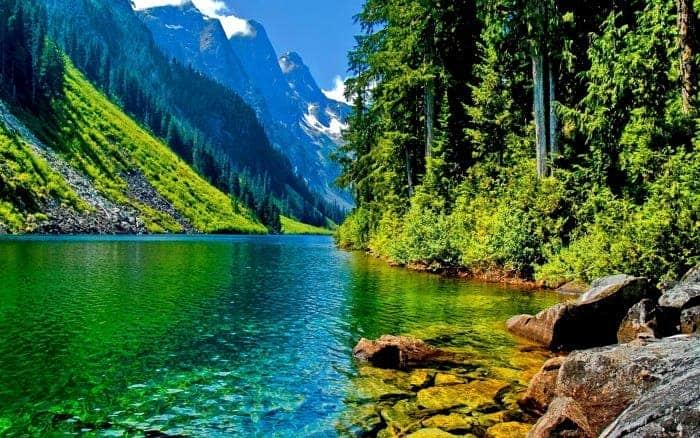 Alpine river bank. Photo: Flickr