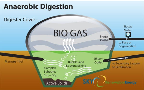Process scheme for a typical anaerobic digester. Credit: Sky Renewable Energy